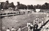 dijon piscine du parc caroussel 1957.jpg
