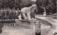 jardin darcy 1954.jpg