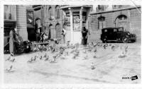 DIJON PLACE DE LA LIBERATION PHOTO 1932.jpg