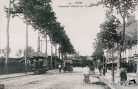 avenue de l'arsenal reproduction didier jacob.jpg